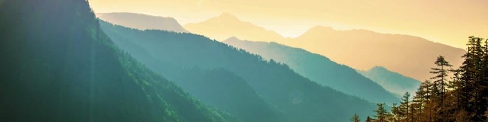 山を守る、森を育てる、山を創る